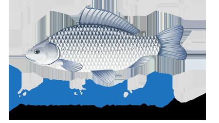 ароматизатор для рыбалки анис